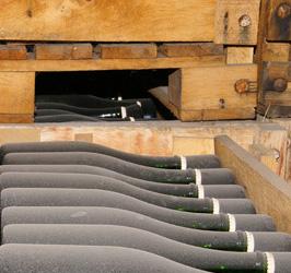 cellar-champagne
